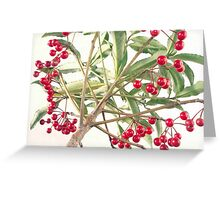 Christmas Berry Greeting Card