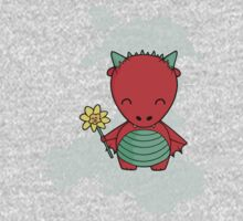 Little Welsh Dragon Kids Clothes