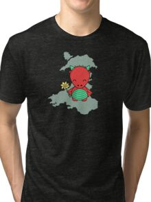 Little Welsh Dragon Tri-blend T-Shirt