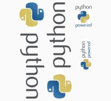 Python ×4 by developer