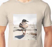 Ruddy Turnstone Unisex T-Shirt