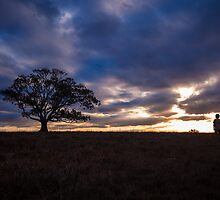 The Tree of Life by McguiganVisuals