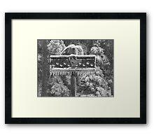 Snow Totem Framed Print