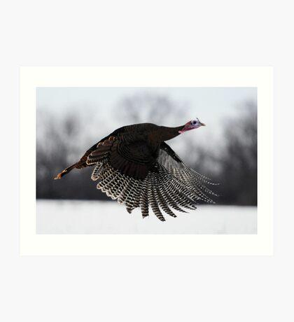 turkey taken off Art Print