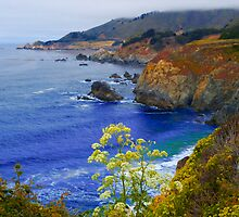 Central California by GoddessChrissy