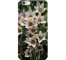 A Bouquet of Miniature Tulips Celebrating the Spring Season - Vertical iPhone Case/Skin