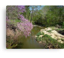 Countryside Stream Canvas Print
