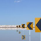 Flooded salt pan with roadside arrows reflected in the water by Harvey Schiller