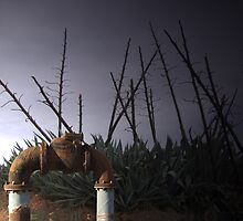 Water valve in front of a giant succulent, the telegraph cactus or century plant. by Harvey Schiller