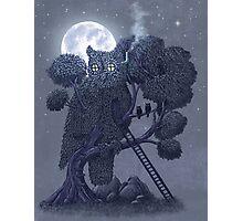 Nightwatch  Photographic Print