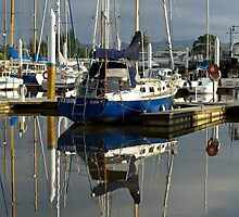 Blue hulls in the morning, Launceston harbour by mypic