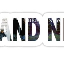 BRAND NEW BAND  Sticker