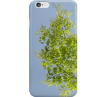 Leaves Up High iPhone Case/Skin