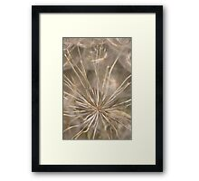 Held in Place Framed Print
