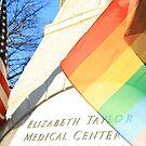 American Rainbow Flags United by Cora Wandel