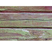 Horizontal timber wall with green mold Photographic Print