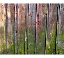 Vertical red plank wall with mold Photographic Print