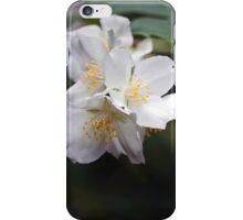 Philadelphus Blossoms iPhone Case/Skin