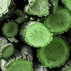 Cut Firewood - Lime by Karen Jayne Yousse