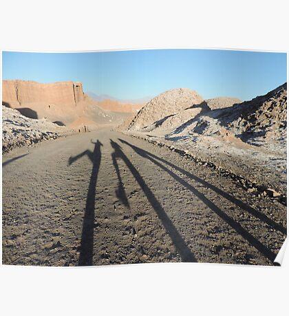 Shadows in the desert Poster