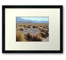 High planes in Atacama Framed Print