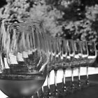 Concho y Toro vineyard by Helen Morton