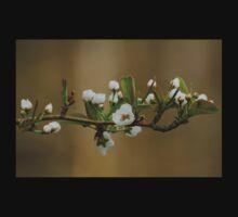 Cherry Blossoms Kids Tee