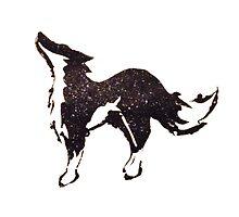 Fox by SpaceFox