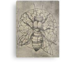 Bee etching  Metal Print