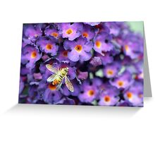 Bumble Bee in the Garden  Greeting Card