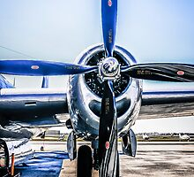 Wright Duplex Radial Engine by chris-csfotobiz