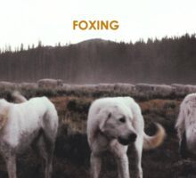 FOXING- album artwork Sticker