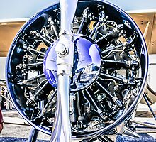 Stearman Speedmill by chris-csfotobiz