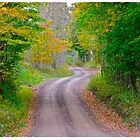 Fitch Road by cammisacam