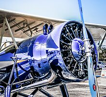 Stearman 4C by chris-csfotobiz