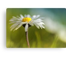 It must be love.... yes, it must be love... Canvas Print