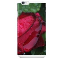 Rose in the Rain  iPhone Case/Skin