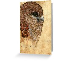 The view - Falcon Greeting Card