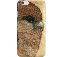 The view - Falcon iPhone Case/Skin