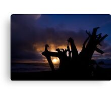 Let the night shine Canvas Print