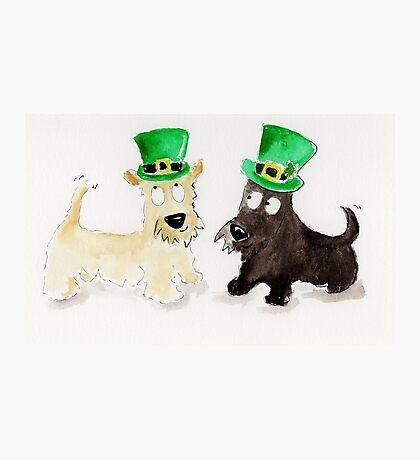 St.Patrick's Day Scottie Dogs Photographic Print