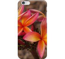 Hot Pink  Summer Frangipani iPhone Case/Skin