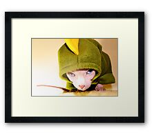 Sphynx/Dino Dress-Up Framed Print