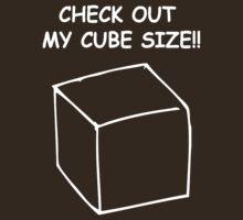 Cube size by Janelle Tarnopolski