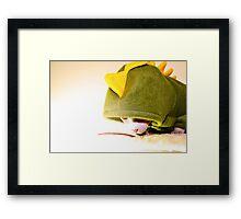 Sphynx/Dino Dress-Up Framed Print