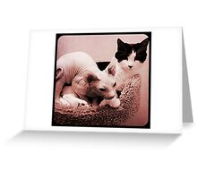 Cosmo and Carl Greeting Card