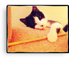Carl plays with his toy Canvas Print