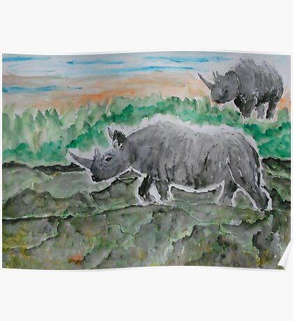 Browsing Rhinos Poster