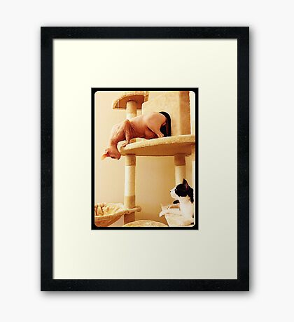 Hello, neighbor Framed Print