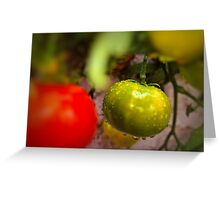 One Green Tomato Greeting Card
